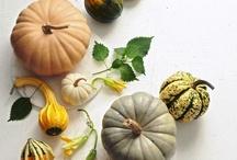 Fall Kitchen & Holiday Inspiration