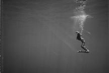 Sea Skate Soul / by SpentWalking .