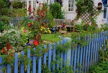 Gardens / by Penny Call