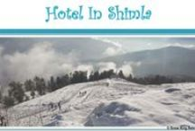 Hotel In Shimla / Budget,Cheap and Luxury Shimla Hotel and Resort.Snow King Retreat In Shimla (Kufri),One of the Best Hotel & Resort in Shimla .Situated at an altitude of 9000 feet in Himalayas Shimla Havens is a newly built resort surrounded by Pine , Cedar and Rhodo Dendron forests .