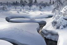 holidays & winter / by jen goemans