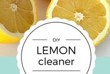 clean it! / DIY cleaners, environmentally friendly products