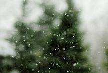 Winter / by Amy Karasz