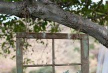 Gardening / by Cheryl Morrison