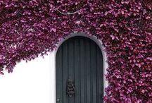 portal / entrances, exits, let some fresh air in