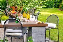 Let's Landscape / Everyone CAN have a green thumb! Get landscaping ideas, inspirations and how-to's here!