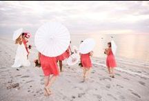 Beach Wedding / Gourmet Sailing specialises in putting together Wedding and Honeymoon packages at stunning New Zealand beach locations.