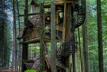 Trees + Tiny Houses = Treehouses / I love my house. But these are amazing to dream about. / by Dusky Loebel