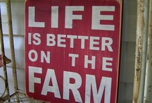 Favorite Quotes / Favorite quotes and sayings / by Jill @ The Prairie Homestead