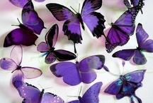 I Love Purple!! / Everything Purple! / by Karen Poole
