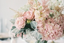 flowers. / Beautiful flowers and how they're sometimes arranged beautifully.