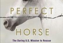 Horses & Horse Racing / If you love reading about horses, these books are for you!