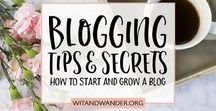 Blogging / I write and design for a blog over at Our Handcrafted Life, but I can't do it by myself! I save tips, tricks, inspiration, books, articles, and more to inspire my blog.