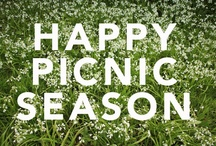 Picnic Fun! / Picnic