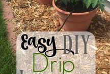Gardening DIY / Find tons of cute ideas and tutorials for how to build awesome, easy and cheap DIY gardening projects for the beginner on a budget. Learn how to make crafts, gifts, art, and indoor or outdoor decoration projects from building trellises for vertical gardening to hanging pots, raised beds, and even backyard Zen gardens! You'll also find tips for how to grow beautiful vegetable, herb, flower and succulent gardens!