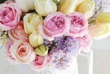 flowers. fluers. fiori
