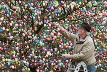 Holidays: Easter / by Heather Smith Benac