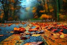 I Love Fall the Most