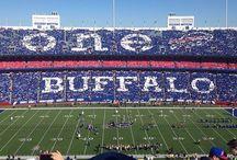 Buffalo Bills 2014 Season