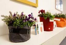 Gamma   P r o d o t t i / Vasi in tessuto traspirante, colorato e resistente. Arredate gli spazi, vestite le vostre piante.