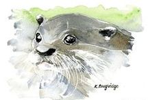 KLArtWildlife Collection / A series of watercolour painted images of some well-loved British wildlife animals
