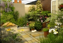Rooftop Gardens / The sky's the limit for rooftop garden designs.  Get inspired by these rooftop gardens.
