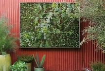 Vertical Gardens / Vertical gardens are an excellent way to save space and display a wide-array of beautiful plants.  For more ideas on vertical gardens, visit http://www.gardendesign.com/find/vertical%20garden.