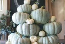 Decorating for Fall and Fall Treats / by Jeanene Gioscia-Heuseveldt