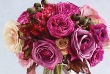 pretty as a flower / by Karen Morgan of Blackbird Bakery Gluten-Free