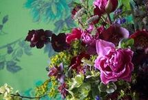 Garden - Flora / Flowers