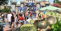 Disneyland Travel Tips / Find the ins and outs to making your family trip to Disneyland the best! When to go, what to do when you get there, how to save money and make the absolute most of your time in the happiest place on earth!