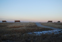 Rocky Mountain Arsenal National Wildlife Refuge / Check out these photos of Stapleton's neighbor north of Interstate 70! / by StapletonDenver  - a  community of neighborhoods in Stapleton, Denver
