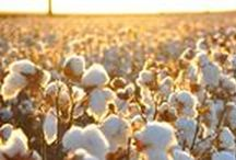 100% Organic Cotton Clothing / Help lead the way in eco-friendly, sustainable fashion by committing to exclusively wear all natural, chemical-free, organic cotton clothing. Together, we can transform the fashion industry!