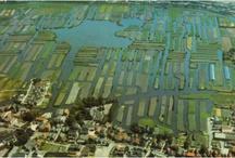 Langedijk in beeld / Beelden van alle Langedijker dorpen. Oud -en nieuw. In beeld: Broek op Langedijk, Koedijk, Noord Scharwoude, Oudkarspel en Zuid Scharwoude.