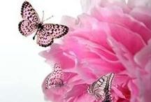 Shades of Pink / by Dawn Rix
