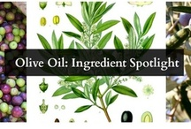 Ingredient Spotlights / by Senica - Skin Care Products