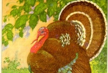 Thanksgiving / by Vicki O'Dell
