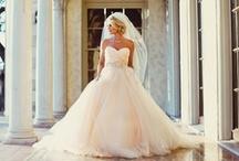 Elegant Bride / by Elise Meadows