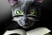Bookish Animals:) / by Christine