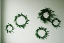 Holiday Decorating / Tablescapes, decorations & DIY. / by Rebecca Haley-Park
