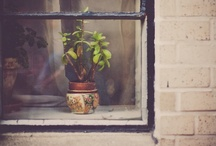 Things I love / by Kari Peloquin