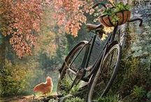 Bicycle Riding / by Pat Fitzgerald