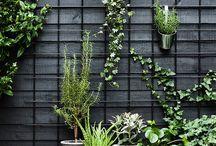 Overwhelming Outdoors / ideas for balcony & garden