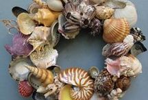Seashell Craft Inspiration / All the cool things that I can make with shells