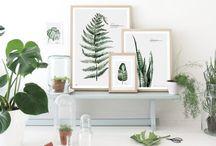 botanics / by Agnieszka Hollis