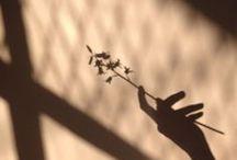 light/shadow.