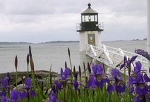 Lighthouses / by Kit Emigh Ream