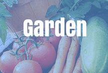Garden / Garden ideas and hints for growing the best garden.