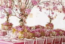 Table Settings / by Shelia Coogler Muse