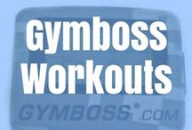 Gymboss Workouts / A board dedicated to interval training